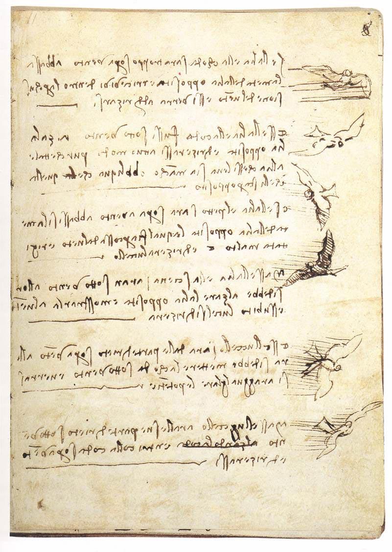 Flight of the Birds Codex